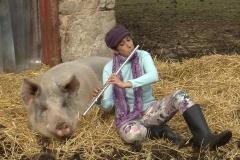 HEE pig 1